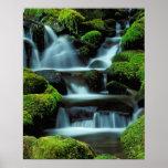 Norteamérica; LOS E.E.U.U.; Washington, cascada de Póster