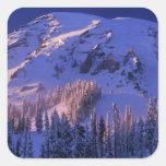 Norteamérica, los E.E.U.U., Washington, el Monte Pegatina Cuadrada