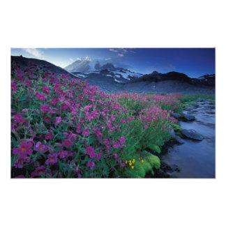 Norteamérica, los E.E.U.U., Washington, el Monte R Impresiones Fotográficas