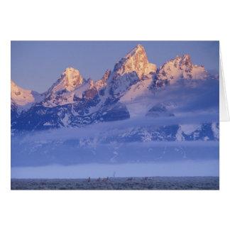 Norteamérica, los E.E.U.U., Wyoming, Teton magnífi Tarjeta De Felicitación