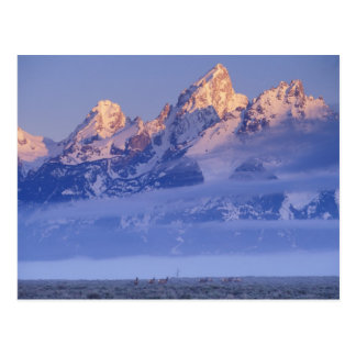Norteamérica, los E.E.U.U., Wyoming, Teton magnífi Postal