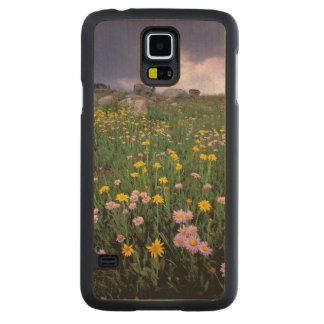 Norteamérica, los E.E.U.U., Wyoming, Yellowstone 2 Funda De Galaxy S5 Slim Arce