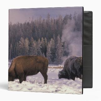 """Norteamérica, los E.E.U.U., Wyoming, Yellowstone Carpeta 1 1/2"""""""
