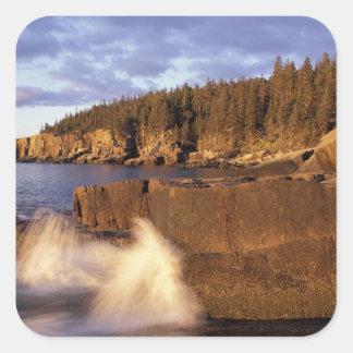 Norteamérica, los E.E.U.U., YO, la costa rocosa de Pegatina Cuadrada