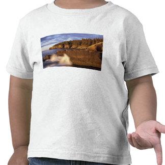 Norteamérica, los E.E.U.U., YO, la costa rocosa de Camiseta