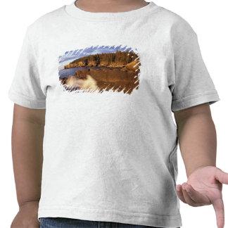 Norteamérica, los E.E.U.U., YO, la costa rocosa de Camisetas