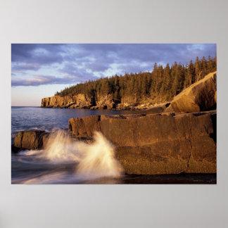 Norteamérica, los E.E.U.U., YO, la costa rocosa de Póster