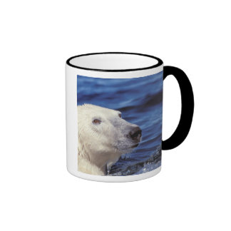 North America, Arctic Circle. Polar bear Coffee Mugs