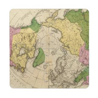 North America, Asia Puzzle Coaster