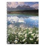 North America, Canada, Alberta, Banff National 2 Notebooks