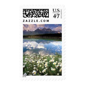 North America, Canada, Alberta, Banff National 2 Postage