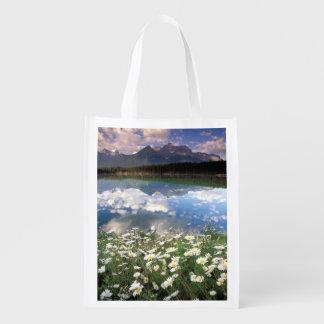 North America, Canada, Alberta, Banff National 2 Reusable Grocery Bags