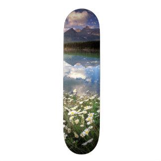 North America, Canada, Alberta, Banff National 2 Skateboard