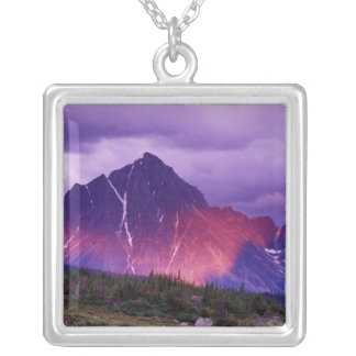 North America, Canada, Alberta, Canadian Silver Plated Necklace