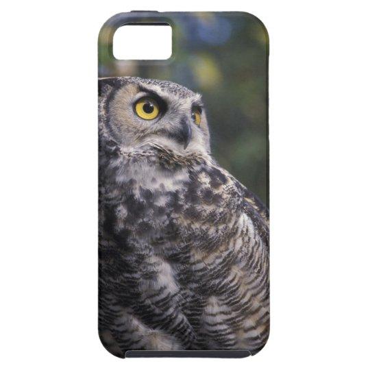 North America, Canada, British Columbia, 2 iPhone SE/5/5s Case