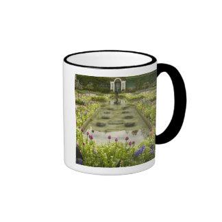 North America, Canada, British Columbia, 4 Mug