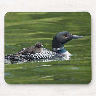 North America, Canada, British Columbia, Lac Le Mouse Pad