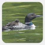 North America, Canada, British Columbia, Lac Le Square Sticker