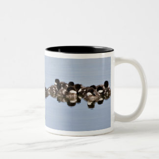 North America, Canada, British Columbia, Lac Two-Tone Coffee Mug