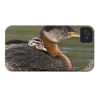North America, Canada, British Columbia, Logan 2 iPhone 4 Case-Mate Case