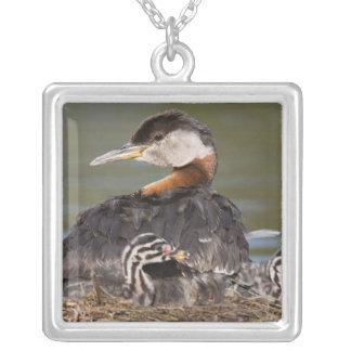North America, Canada, British Columbia, Logan 2 Silver Plated Necklace