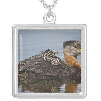 North America, Canada, British Columbia, Logan 3 Silver Plated Necklace