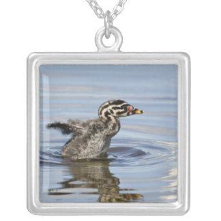 North America, Canada, British Columbia, Logan Silver Plated Necklace