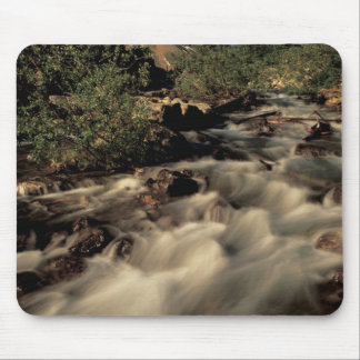North America, Canada, Canadian Rockies, Banff Mouse Pad