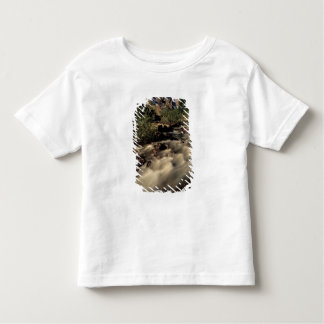 North America, Canada, Canadian Rockies, Banff Toddler T-shirt