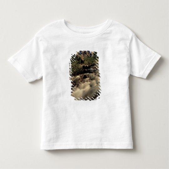 North America, Canada, Canadian Rockies, Banff Toddler T-shirt