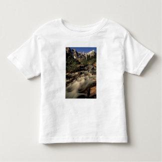 North America, Canada, Canadian Rockies, Banff Shirts