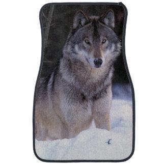 North America, Canada, Eastern Canada, Grey wolf Floor Mat