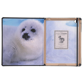 North America, Canada, Gulf of St. Lawrence. 2 Case For iPad