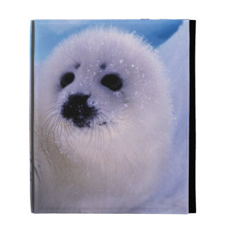 North America, Canada, Gulf of St. Lawrence. 2 iPad Case