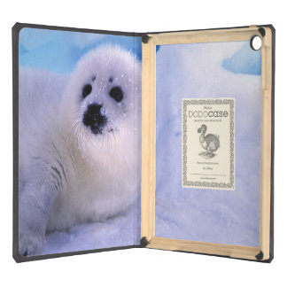 North America, Canada, Gulf of St. Lawrence. 2 Cover For iPad Air