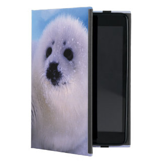 North America, Canada, Gulf of St. Lawrence. 2 Cover For iPad Mini
