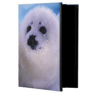 North America, Canada, Gulf of St. Lawrence. 2 iPad Air Case