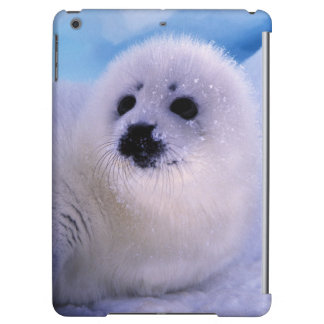North America, Canada, Gulf of St. Lawrence. 2 iPad Air Covers