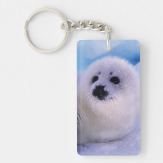 North America, Canada, Gulf of St. Lawrence. 2 Keychain