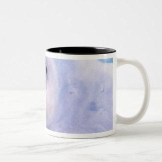 North America, Canada, Gulf of St. Lawrence. 2 Two-Tone Coffee Mug