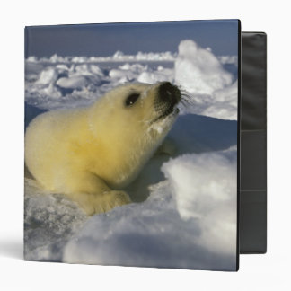North America Canada Gulf of St Lawrence 3 3 Ring Binder