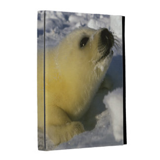 North America, Canada, Gulf of St. Lawrence. 3 iPad Folio Covers