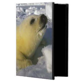 North America, Canada, Gulf of St. Lawrence. 3 iPad Air Case