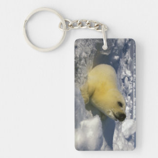 North America, Canada, Gulf of St. Lawrence. 3 Keychain