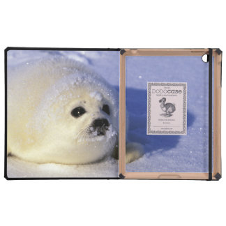 North America, Canada, Gulf of St. Lawrence. 4 Case For iPad