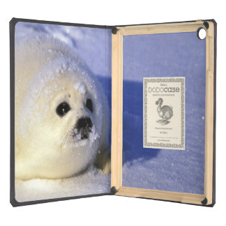North America, Canada, Gulf of St. Lawrence. 4 iPad Air Cases