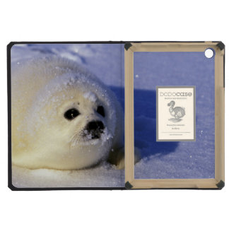 North America, Canada, Gulf of St. Lawrence. 4 iPad Mini Covers