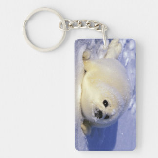 North America, Canada, Gulf of St. Lawrence. 4 Keychain