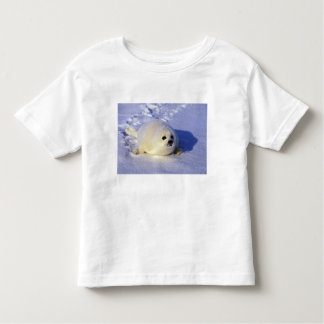 North America, Canada, Gulf of St. Lawrence. 4 Toddler T-shirt