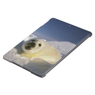 North America, Canada, Gulf of St. Lawrence. 5 iPad Air Case